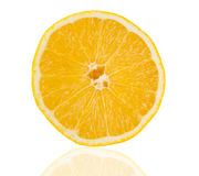 Slice of fresh lemon isolated Stock Image