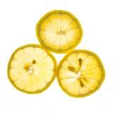 Slice of fresh lemon isolated on white background Stock Image