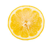 Slice of fresh lemon Stock Photography
