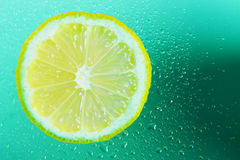 Slice of fresh lemon. With water droplets Stock Photo