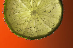 Bubbles on lime slice - close. A slice of fresh lime with air bubbles in sparkling drink or water, viewed close-up (macro) on red background Royalty Free Stock Images