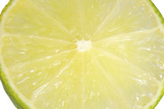 Slice of fresh lime. Royalty Free Stock Images