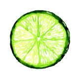 Slice of fresh lime on white background Royalty Free Stock Image