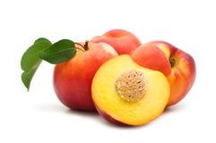 Slice fresh nectarine Stock Image