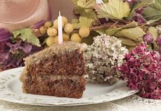 A Slice of German Chocolate Cake Stock Image
