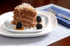 A slice of German Chocolate cake with blackberries. On a blue plate Royalty Free Stock Image