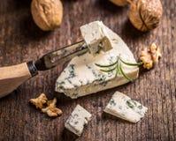 Slice of gorgonzola cheese Royalty Free Stock Photo