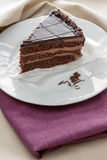 Slice of gourmet chocolate cake Royalty Free Stock Image