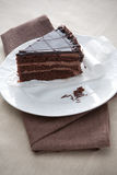 Slice of gourmet chocolate cake Royalty Free Stock Photos