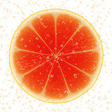 Slice of grapefruit Royalty Free Stock Photo