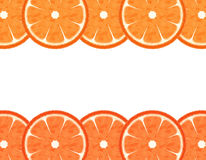 Slice Grapefruit Border Stock Photography