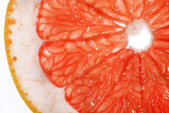 Slice of grapefruit Royalty Free Stock Image