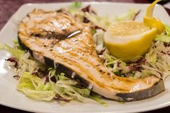 A slice of grilled swordfish royalty free stock images
