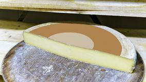 Slice of the Gruyere de Comte Aging Cheese on wooden shelf Royalty Free Stock Photos
