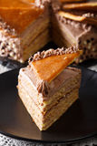 Slice of Hungarian Dobos cake closeup. vertical Royalty Free Stock Photo