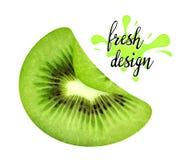 Slice of juicy kiwi. Royalty Free Stock Image