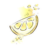 Slice of juicy lemon. Vector illustration, isolated on white background. Stock Photography