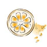 Slice of juicy orange. Vector illustration,  on white. Royalty Free Stock Images