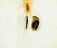 Slice of juicy pear Stock Photos