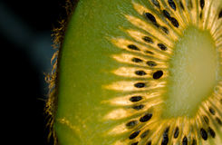 Slice of kiwi fruit with black background. A slice of fresh kiwifruit with black seeds and black background Royalty Free Stock Photo