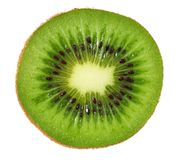 Slice of kiwi fruit isolated on white background royalty free stock photos