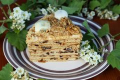 A slice of a layered biscuit cake on a plate Stock Photo
