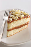 Slice of layered cake. Slice of layered vanilla or lemon cake, stuffed with Dulce de leche (milk jam) is Argentina's traditional desert Royalty Free Stock Images