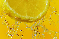Slice of lemon. Stock Image