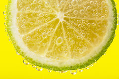 A slice of lemon in bubbles Royalty Free Stock Photos