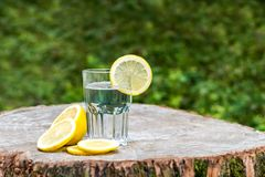 The slice of lemon on a glass of water. On wooden stump. Green background outdoor Stock Photo