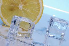 Slice of lemon and ice cubes Stock Photos