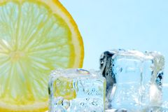 Slice of lemon and ice cubes Stock Photography