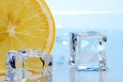 Slice of lemon and ice cubes royalty free stock image