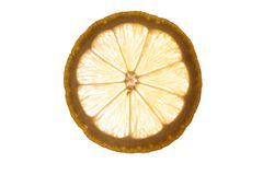 Slice of an lemon  isolated on white background back lit Stock Photography