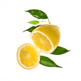 Slice of lemon with leaves Royalty Free Stock Photo