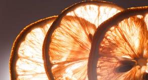 Slice lemon macro Royalty Free Stock Images