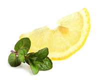 Slice of lemon with mint. Royalty Free Stock Photo