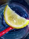slice of a lemon in a sprakling water glass Royalty Free Stock Photography