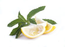 A slice of lemon and a sprig of mint Royalty Free Stock Images