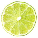 Slice of lime Royalty Free Stock Photo