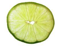 Slice of lime. Isolated slice of lime Stock Photography