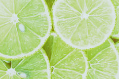 Slice of lime. Close-up of slice of lime royalty free stock photos