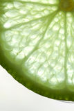 Slice of Lime Royalty Free Stock Images