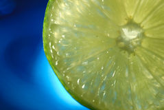 Slice of lime on blue Royalty Free Stock Image