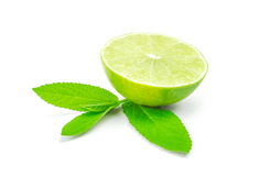 Slice of lime citrus fruit isolated on white background Stock Photography
