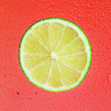 Lime with drop on red Royalty Free Stock Image