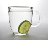 Slice of lime in Glass Mug. Slice of Lime in a glass mug of hot water Stock Images