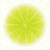 Slice of lime Stock Images