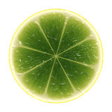 Slice of lime Royalty Free Stock Photography
