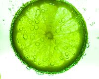 Slice of lime with water drops Stock Photo
